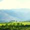 Agricola Montespada e l'agricoltura biologica